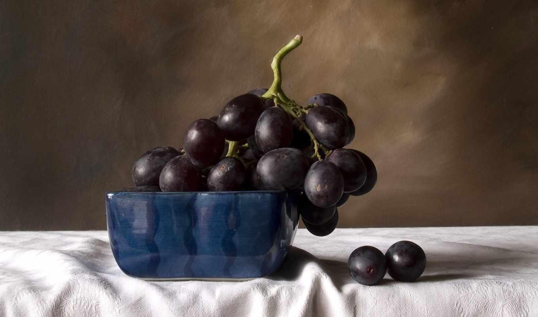 виноград, черный, натюрморт,