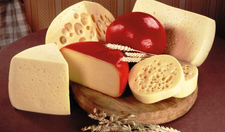 сыра, сорта, сыр, сортов, деле, самом,