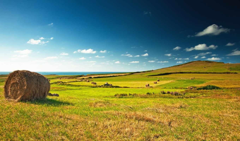 landscape, поле, зелёный, взгляд, зеленое, great, луг, деревня, картинка, стог,