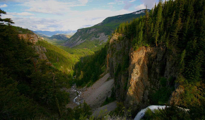 река, горы, тайга, mountains, forest, canyon, nature, картинка, sfondi,