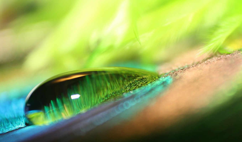 , water, droplet, surface, huge,