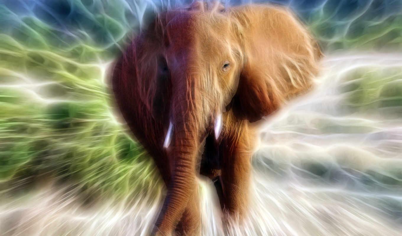 art, fractal, слон, animal, живопись, fractals, абстракция, стена, нефть,