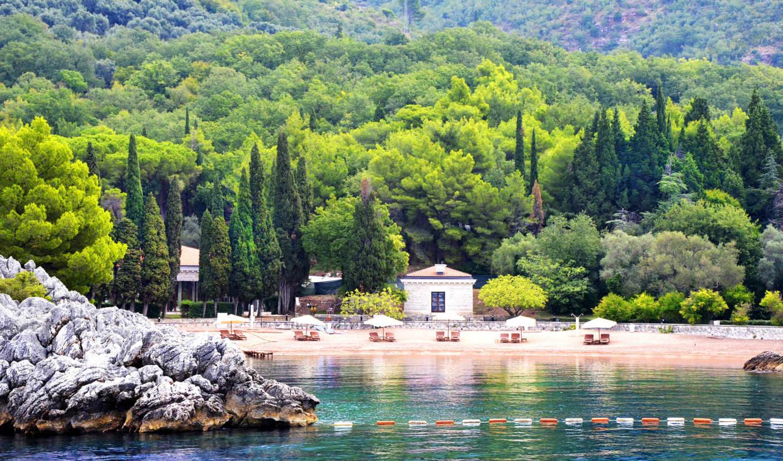 montenegro, пляж, rozl, море, trees, nice, зелёный, сладкое, дек, картинка,