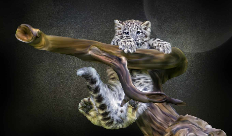снег, ирбис, леопард, детёныш, разрешения, zhivotnye, photoshop,