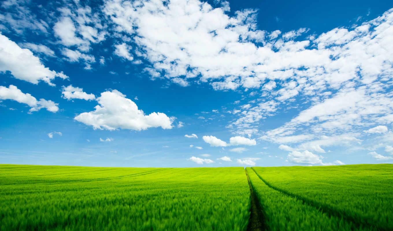 summer, природа, landscape, пейзажи -, hdr, красивая, мар, добавим,