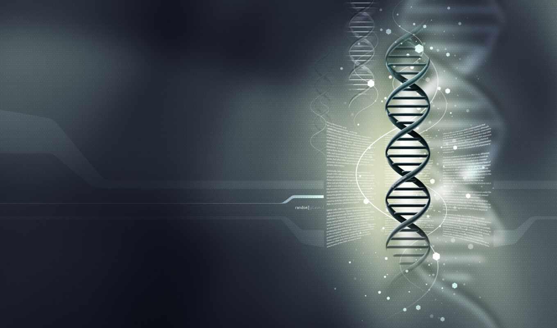 DNA, science, medicine, grey
