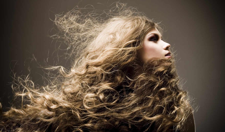 волосы, волос, прически, за, волосами,