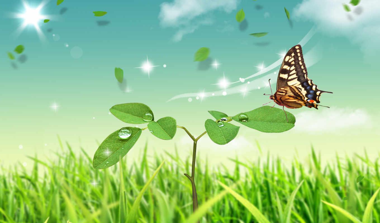 summer, широкоформатные, бабочка, природа, стебель, лепесток, сидит, нарисованные,