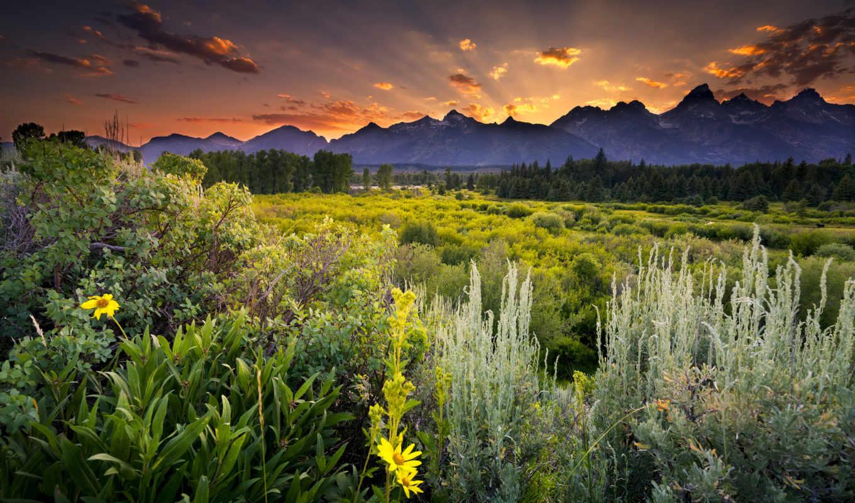 природа, широкоформатные, качественные, красивые, заставки,