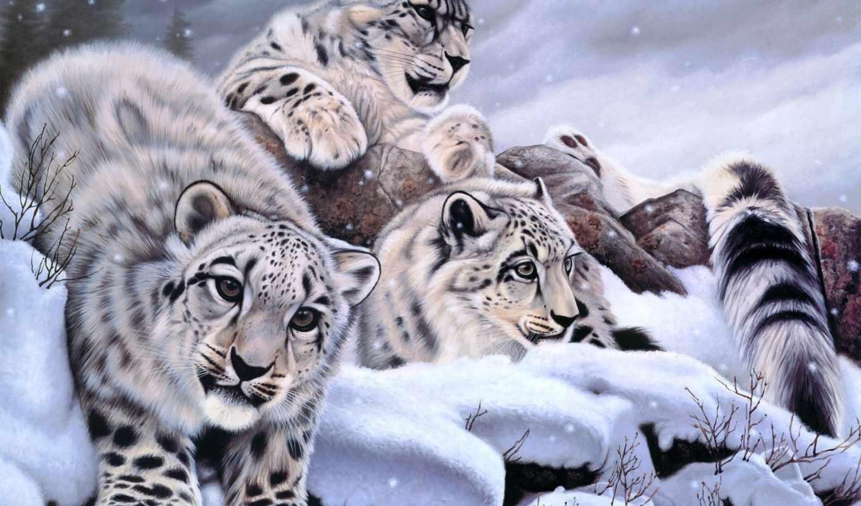 zhivotnye, зимой, дек, свой, цитатник, целикомв, andrei, цитата, сообщения, community, stoliar,