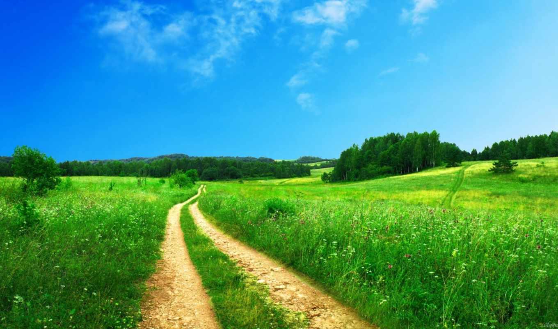 ,природа, трава, дорога, небо, лето, деревья,