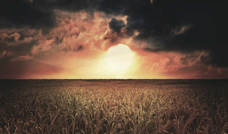 поле, sun, possible, закат, oblaka,