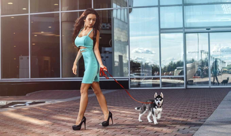 хаски, девушка, собака, рисунок, отражение, brunette, очки, выгул,