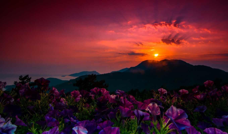 закат, turkish, pin, discover, показать, pinterest, purple, wisconsin, ночь, река, размытость