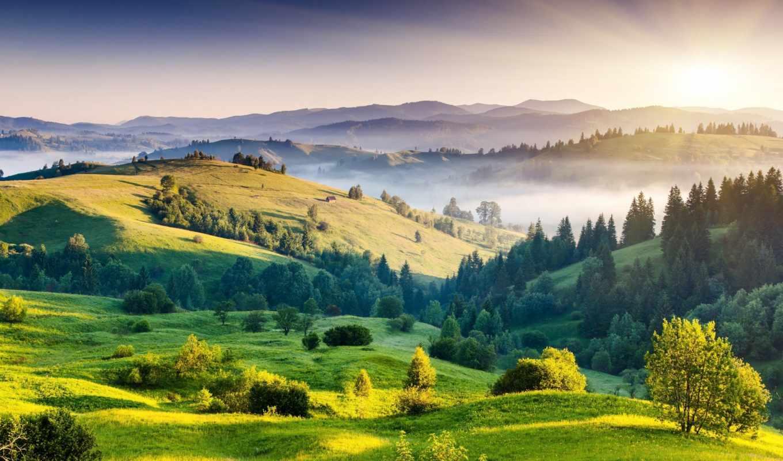 природа, пейзаж, деревья, холмы, рассвет, туман, зелень, картинка,