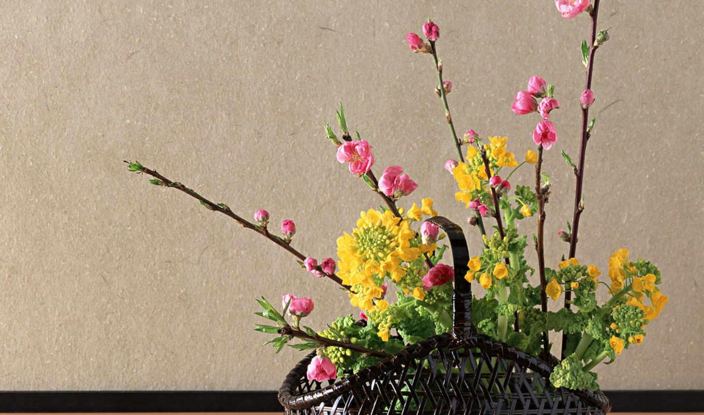 значок, букет, корзина, flores, япония, winter, категории, разрешений,