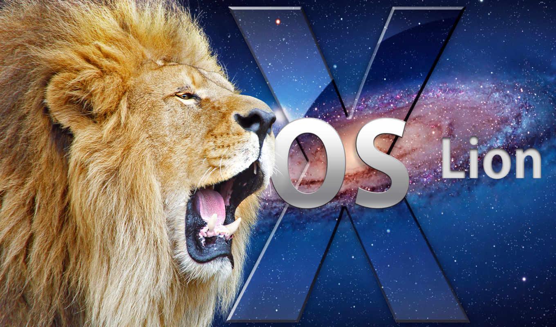 lion, panthera, mac, osx,