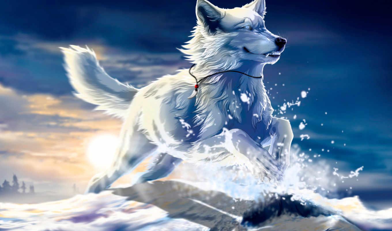 art, free, высоком, wolfroad, белый, снег, zakat, волк, прыжок,