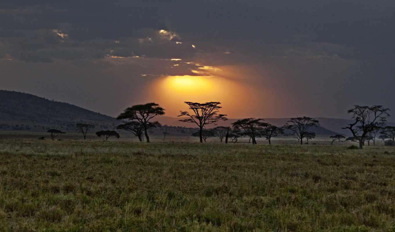 африка, саванна, кения, закат, картинка, кнопкой,