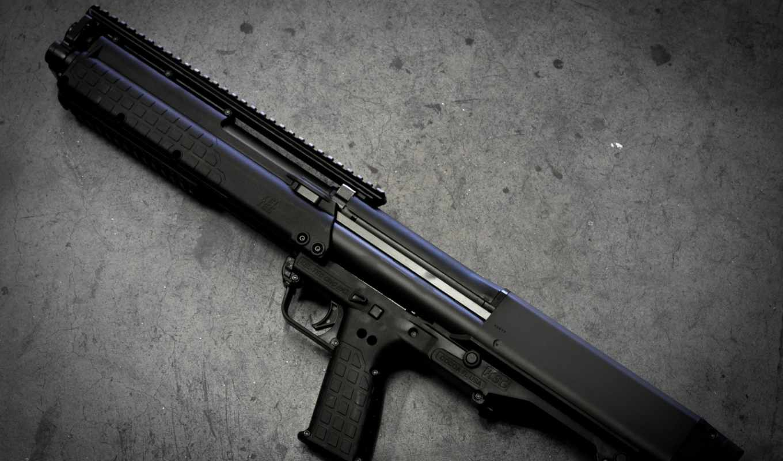 pictures, tec, kel, ksg, rifle,