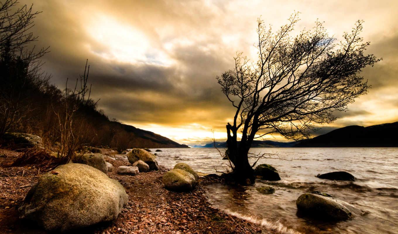 мрак, дерево, природа, река, камни, смотрите,