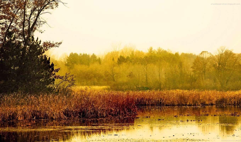 landscape, осень, пейзажи,