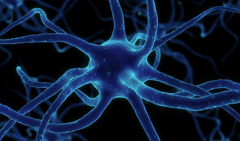 нейрон, сеть, синапсы, нервы, клетка, golgi, you, health, iphone, this, картинка, мозг, black,