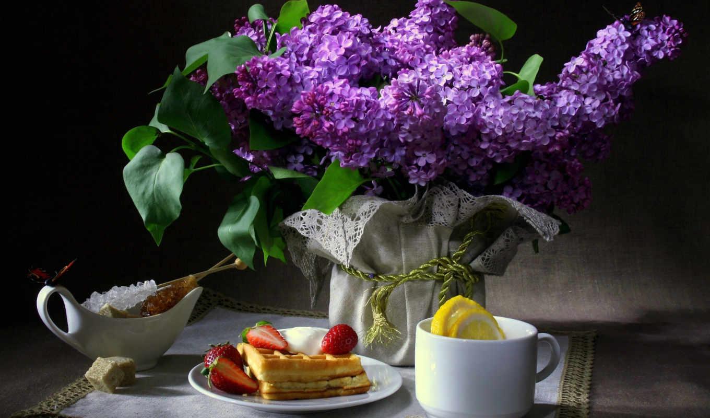 цветы, сиреневый, бабочки, еще, вафли, завтрак,
