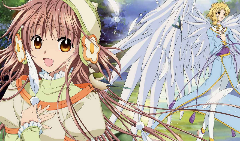 kobato, anime, manga, hanato, внешность, kohaku, clamp,