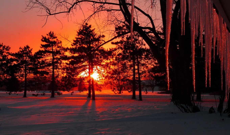 закат, sun, winter, лес, trees, снег, сосульки, солнца, красивые, природа, вечер,