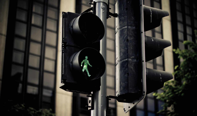 август, году, день, истории, honor, traffic, международный, события, отмечается, пешеходов, американском, произошедшего, светофора,