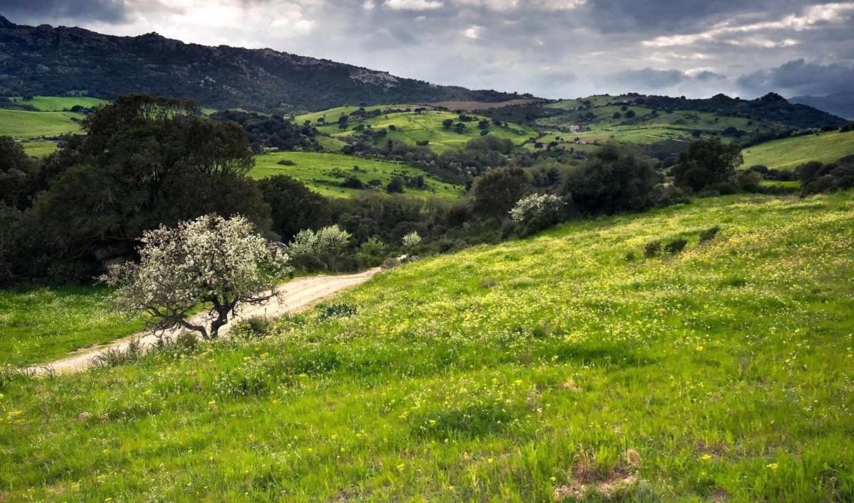 холмы, муреа, зеленые, italy, сардиния, зелёный, бунгало, закате,