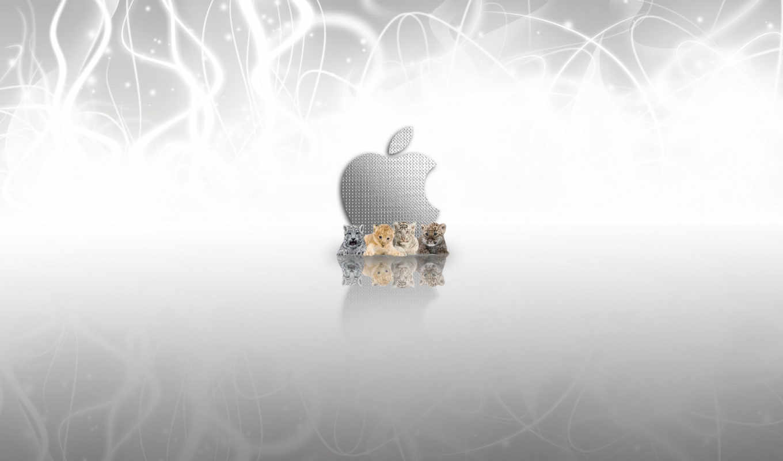 , desktop metaphor, apple, osx