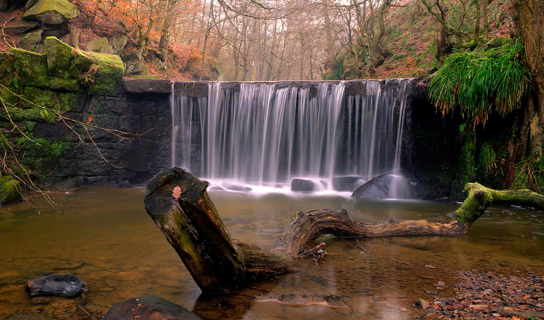 водопад, река, природа, лес, коряга, камни, осень,