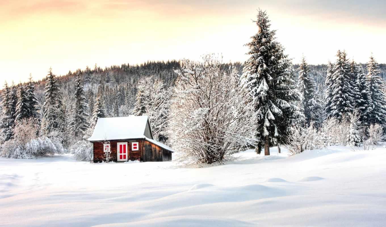 winter, снег,