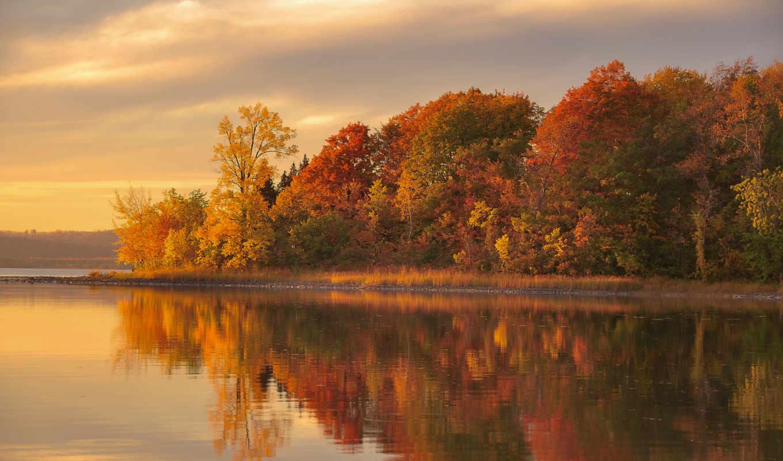 осень, река, landscape, природа, kurslar,