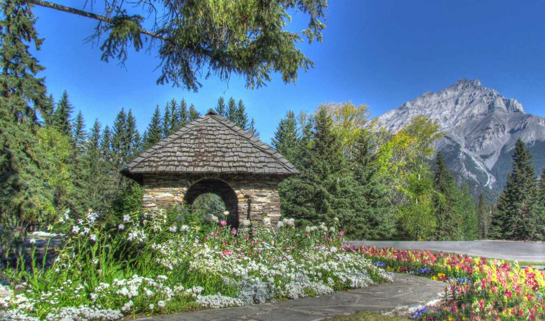 гора, world, mountains, flowers, garden, map, цветы, страница,