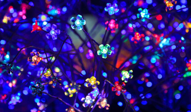 свет, цветы, лампочка, neon, огни, colorful, diwalus, glare