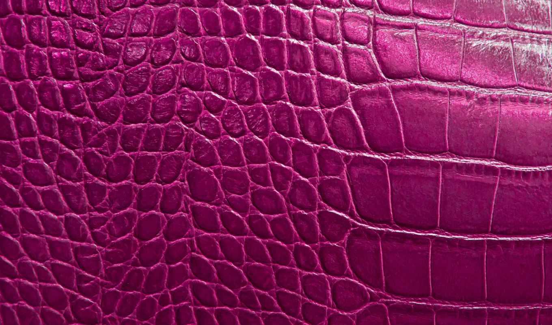 skin, крокодил, текстура, stock, фото, pattern, wild, фотографий, photos, royalty,