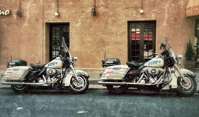davidson, harley, мотоциклы, спорт, улица, просмотреть,