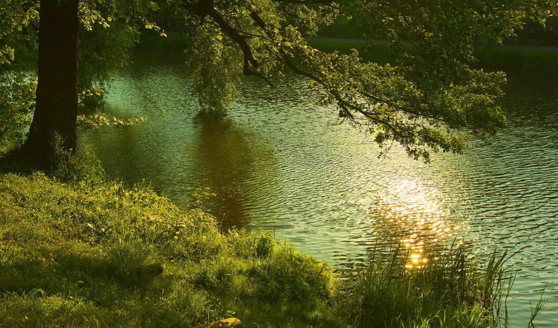 river, visitas, pantalla, trees, fondos, tap,