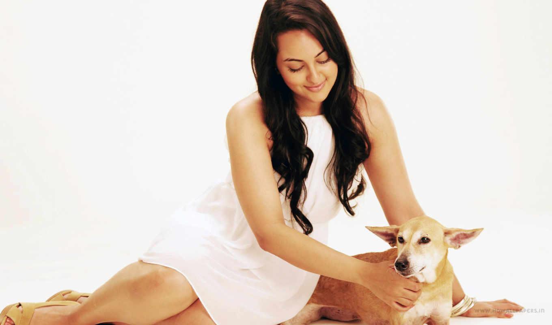 sonakshi, sinha, adopt, пета, собака, stars, объявление, new,
