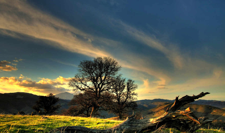 природа, красивые, дерево, трава, поляна, природы, oblaka, природу, горы, небо, коряга,