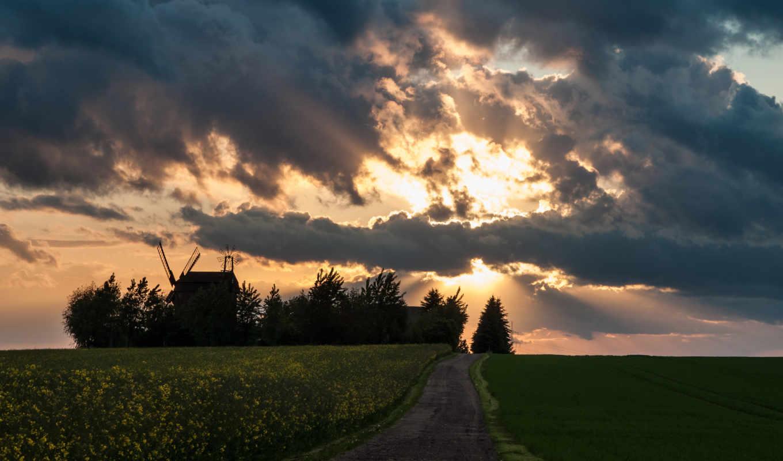 мельницы, небо, рапс, поле, облака, лучи, дорога, солнце,