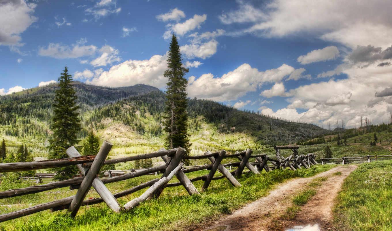 красивые, заборы, деревя, пейзажи -, yellowstone, горы, дорога, water, лужа, снег, дороги,