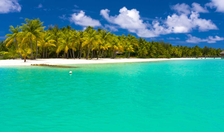 море, взгляд, песок, тропики, пляж, пальмы, maldives,