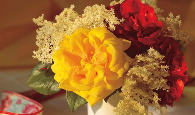 цветы, flower, wallpapers, фото, обои, quot, flowe