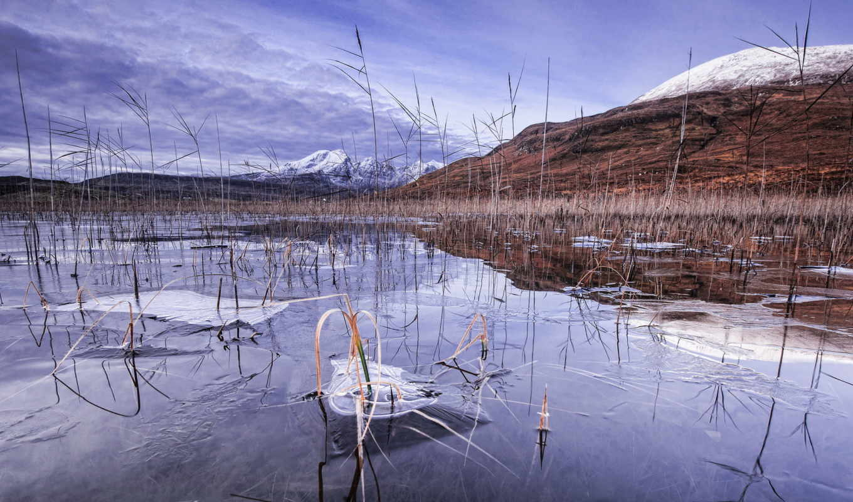 озеро, frozen, winter, лес, лед, день,