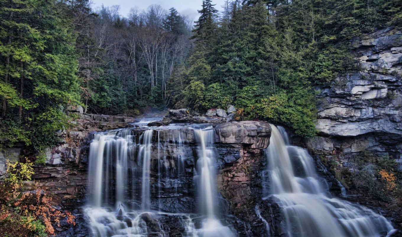 falls, blackwater, west, водопад, лес, каскад, западная, деревья, virginia,