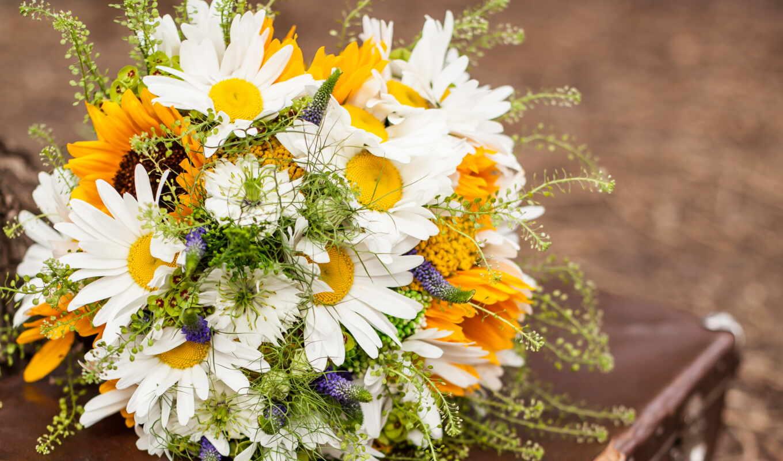 цветы, букеты, ромашки, розы, подсолнухи,